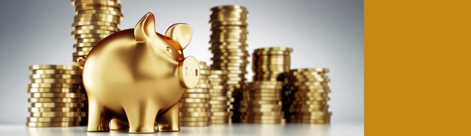 Goldsparplan der Volksbank Löbau-Zittau eG